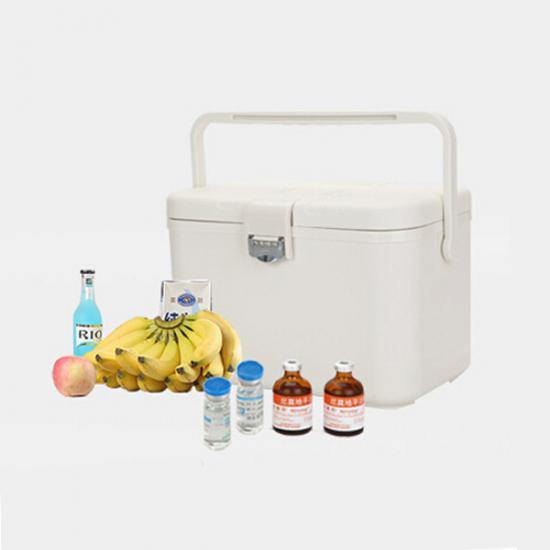 Cooler Box for Blood Sample Transportion