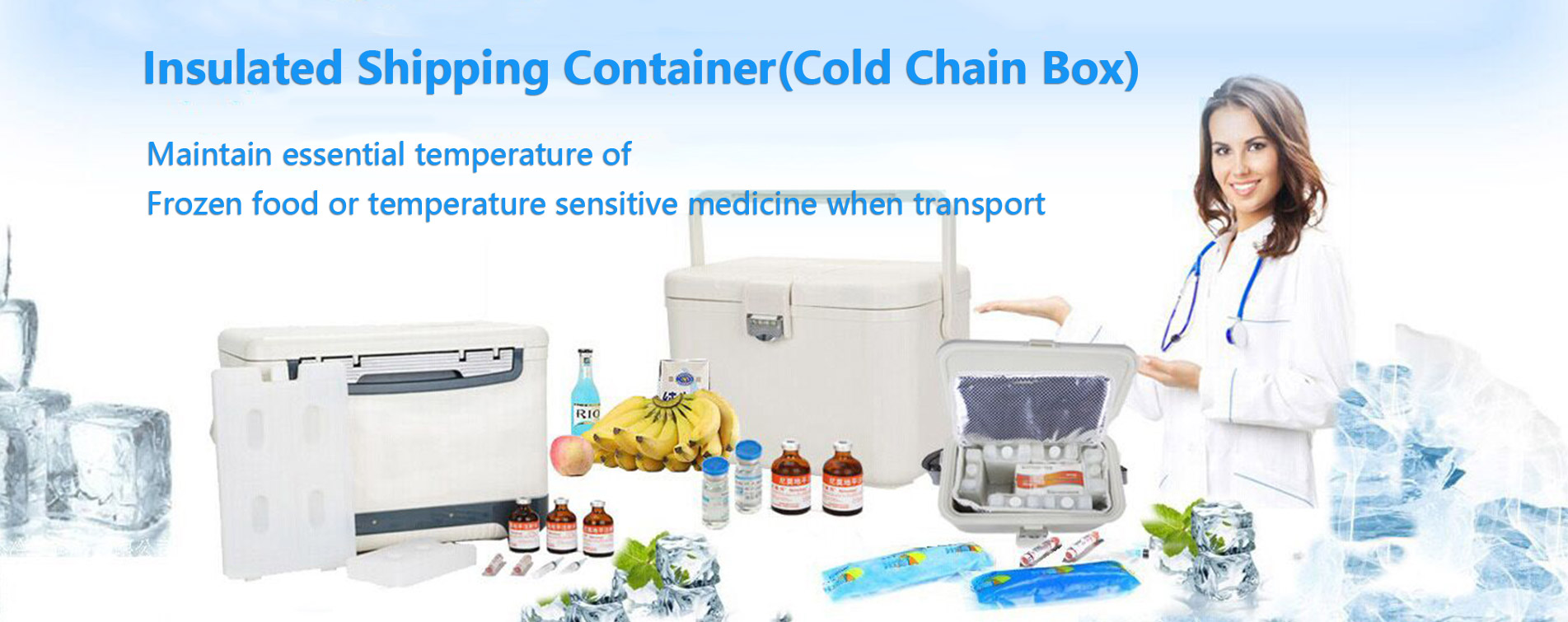 Insulated Shipping Container, Cold Chain Box